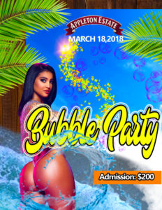 jamaica360media water party flyer